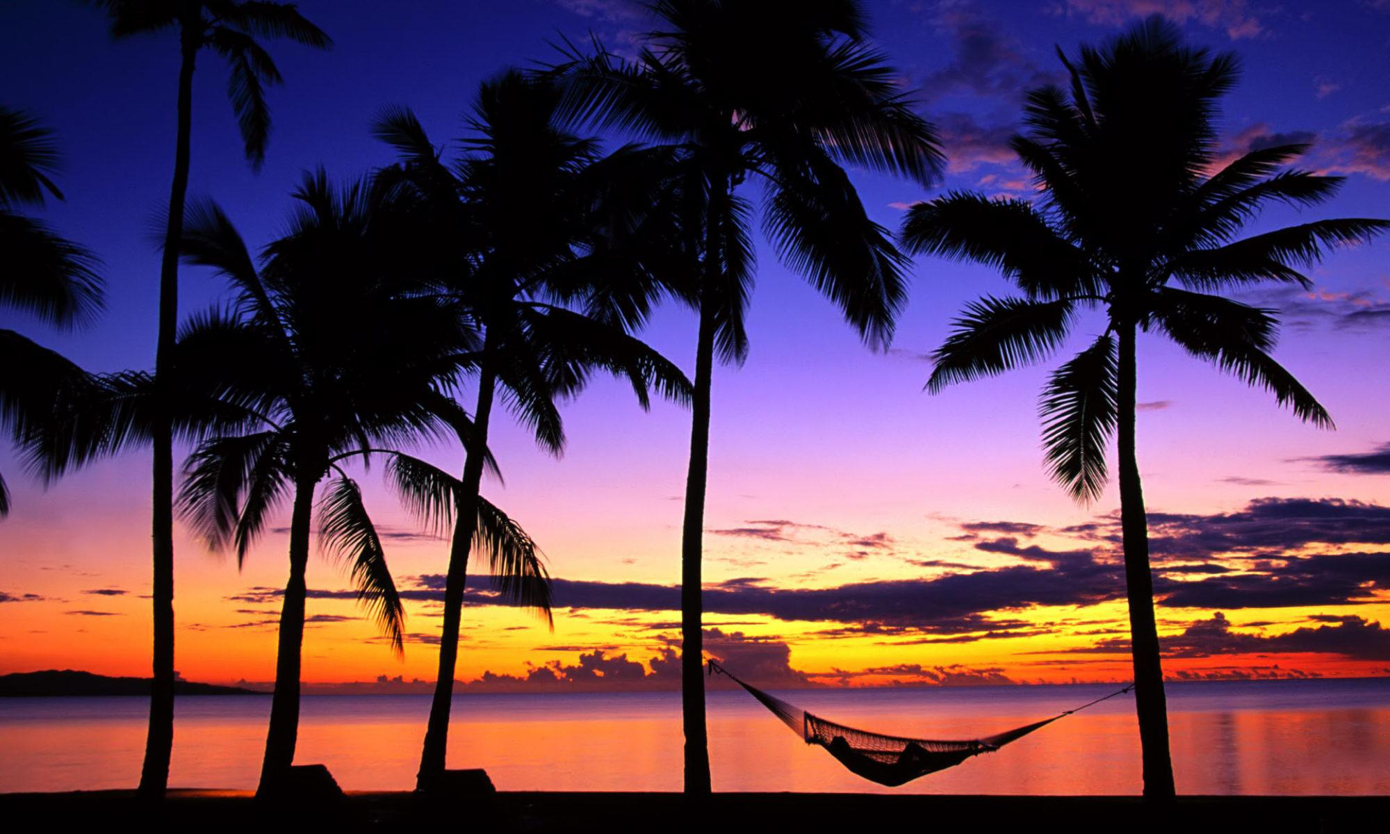 Paradise Social